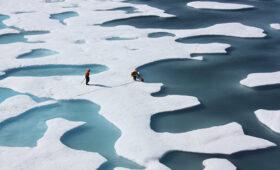 Назван срок запуска первого российского спутника мониторинга климата Арктики — ПРАЙМ, 14.11.2020