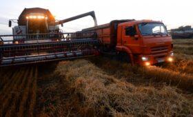 «Коммерсантъ» узнал о возникших сложностях при экспорте пшеницы