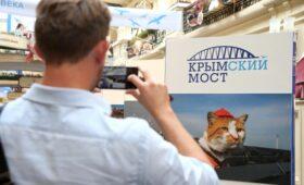 «Крымский мост» и «Кот Мостик» сменили владельца