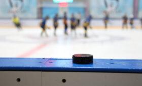 Новый сезон Национальной хоккейной лиги начнется 13 января