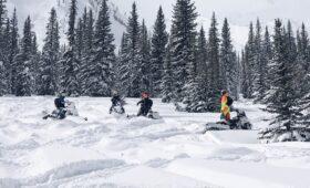 Спрос на снегоходы вырос на 31%