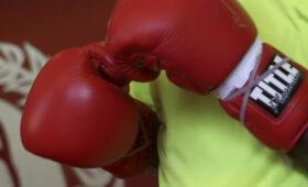 Боксер Кузьмин проиграл бой сопернику из Конго Баколе Илунге