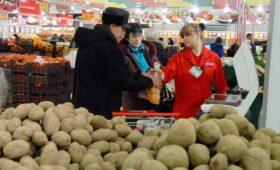 Производители предложили сетям пустить в продажу картофель «экономкласса»