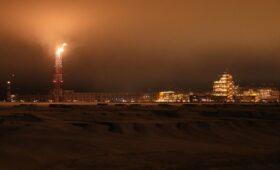 Михельсон заявил об интересе «Сибура» к газохимическому кластеру на Ямале