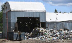 Бизнес выступил против использования средств экосбора на сжигание мусора