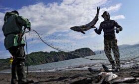 АФК «Система» заинтересовалась рыбалкой на Камчатке