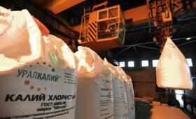 «Уралкалий» в 2020 году получил 2,3 миллиарда рублей убытка — ПРАЙМ, 26.02.2021