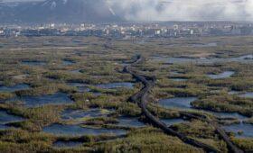 Россия ответит на углеродный налог Евросоюза через ВТО