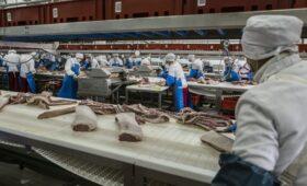 Потребление свинины достигло пика в новейшей истории России