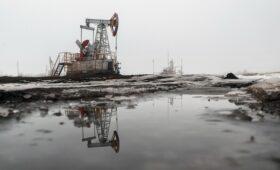 ЦБ назвал справедливой текущую цену на нефть