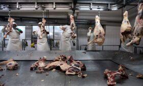 Аргентина приостановила экспорт говядины