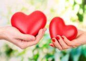 Сердца мужчин и женщин работают по-разному