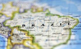 Темпы вырубки лесов в бразильской Амазонии продолжают расти — ПРАЙМ, 08.05.2021