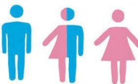 Гендер определили по функциональным связям головного мозга