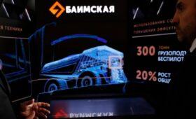 Путин одобрил энергопроект «Росатома» для ГОКа на Чукотке за ₽169 млрд