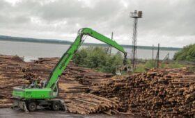 Segezha займет ₽27 млрд у банков на лесопромышленный проект в Карелии