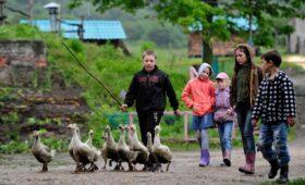 Путин призвал регионы «чутко и оперативно» помогать многодетным семьям