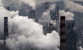 Абрамченко поручила ввести наказания для компаний за выбросы в 12 городах