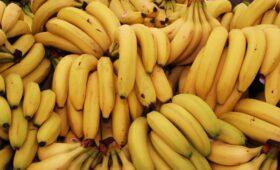 Путин ответил, почему бананы из Эквадора дешевле российской моркови