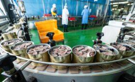 Россельхознадзор нашел признаки подделки у половины консервов из сайры