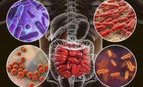 Ученые выяснили, как кишечный микробиом переносится от матери к ребенку