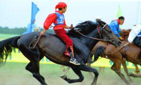 Скачки и борьба на поясах: национальные виды спорта стран СНГ. Карточки