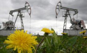 Аналитики допустили рекордный рост добычи нефти в России к лету 2022 года»/>