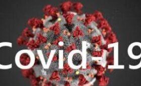 Победивших COVID-19 нужно отправлять на работу