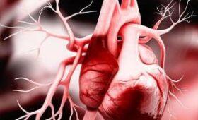 Растущий клапан поможет детям с пороками сердца