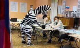 Вбросы, побег от полиции и енот. На что жаловались в первый день выборов»/>