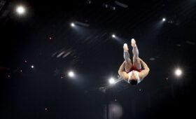 Один из элементов в спортивной гимнастике назвали в честь россиянина