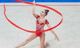 Олимпиец назвал несправедливым вручение BMW X5 гимнастке Авериной